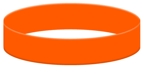 Wristband Color Example - Orange