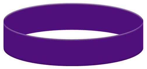 Wristband Color Example - Purple